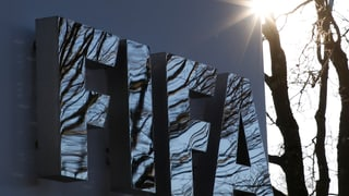 Fifa-Kandidaten geben EU-Parlament einen Korb