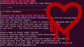 Fehler in OpenSSL betrifft einen Grossteil des Internets