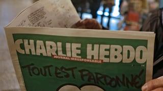 Pressefreiheit: Zeichner sind am meisten bedroht