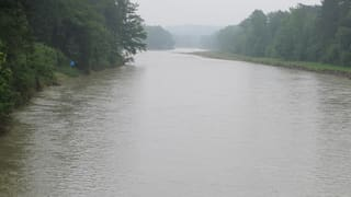 «Für die Thurauen war dieses Hochwasser ein Glücksfall»