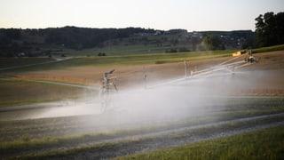 Wasser-Experten kritisieren Bauern