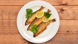 Bio-Fisch ist immer noch am besten