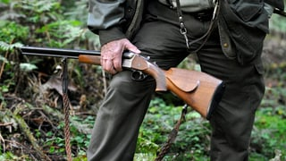 Solothurner Jäger müssen Schwarzwildschäden mitzahlen