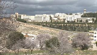 Mit der Expertin durchs Westjordanland