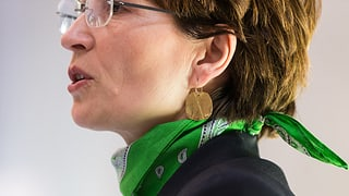 Missratener Start ins Wahljahr für die Grünen