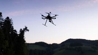 Gericht hält Drohnenfotos von Horw für unzulässig