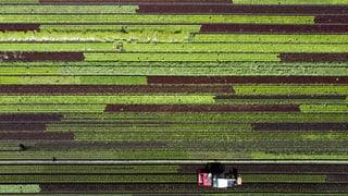 Die Landwirtschaft ist unter Druck