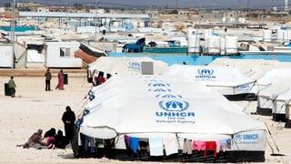 Bundesrat will wieder Kontingents-Flüchtlinge aufnehmen