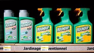 Monsanto bringt Bayer in die Bredouille