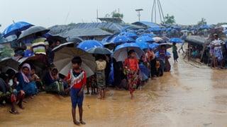 «Man könnte sagen: Pech für die Rohingya»