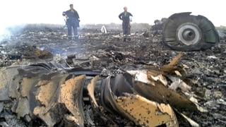 Absturz von Flug MH17: Die Bilder