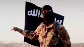 «Der IS funktioniert im Grunde wie die Mafia»