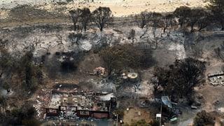 Hitzewelle in Australien – erste Opfer befürchtet