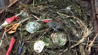 Kompostieranlagen kämpfen gegen den Plastik-Müll