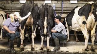 Bauern fordern Anerkennung ihrer Wirtschaftskraft