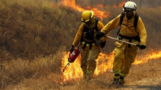 Waldbrand in San Francisco breitet sich aus