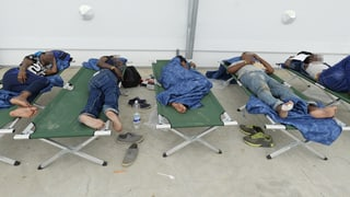 «Asylkrise in Österreich ist hausgemacht»