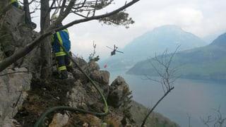 Der Waldbrand oberhalb von Gersau ist gelöscht