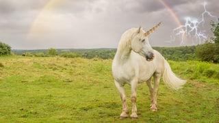 Ist Fantasy-Literatur eine neue Ersatzreligion?