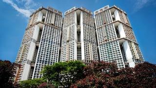 Grüne Hochhäuser: In Singapur forscht die ETH, wie wir in Zukunft wohnen könnten
