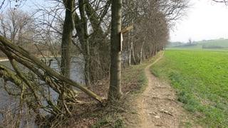 Hochwasserschutz-Projekt Reuss wird überarbeitet