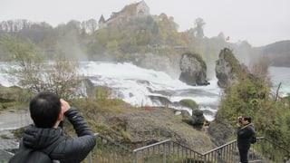 Touristen aus Asien strömen zahlreich an den Rheinfall