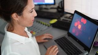 Dem Daten-Wahlkampf auf der Spur  (Artikel enthält Audio)