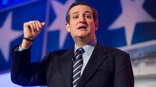 Erster Republikaner steigt aufs Kandidatenkarussell