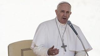 Starker Stoff: Die Öko-Enzyklika von Papst Franziskus