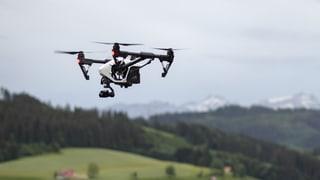 Wenn Drohnen Tierleben retten