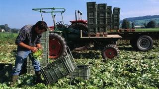 Bauern: «Wir sind wichtiger, als es scheint»