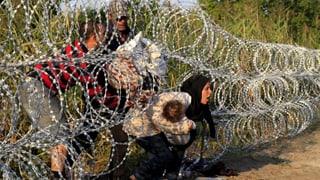 Ungarn-Flüchtlinge von 1956 zeigen Verständnis für Grenzzaun