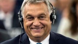«Das Artikel-7-Verfahren ist ein Geschenk für Orban»