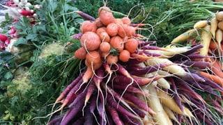 Hipster-Gemüse erobert Zürcher Märkte