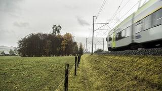 Berner Regierung ist für Standort Chliforst Nord