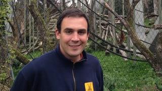 Weshalb die Gorillas im Zolli trotz Affen-Glacé schlank sind