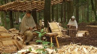 Video «Mitten im Wald entsteht eine frühmittelalterliche Klosterstadt» abspielen