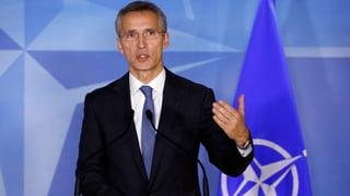 Nato öffnet Beitrittstüre für die Ukraine