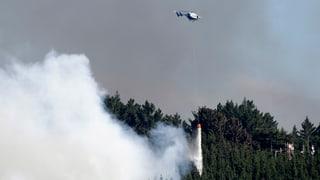 Tausende Neuseeländer müssen wegen Buschbränden fliehen