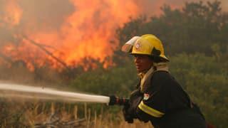 Brände bei Kapstadt: Tausende Hektar Wald in Flammen