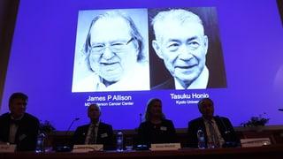 Nobelpreis für Meilenstein im Kampf gegen Krebs