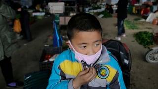 Auf der Spur von H7N9