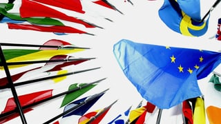 «Man ist uneins, was die EU überhaupt sein soll»