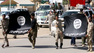 IS verliert 14 Prozent seines Territoriums