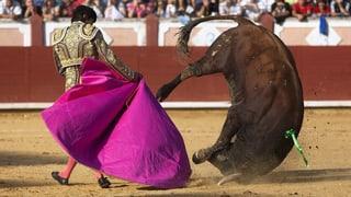 ¡Olé! Spanien schützt Stierkampf per Gesetz