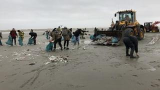 Verlorene Container verschmutzen die Umwelt