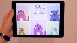 100'000 Franken für ein virtuelles Kätzchen