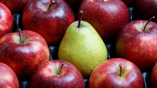 Täglich Obst – egal welches
