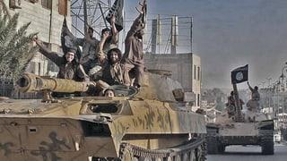 Amnesty: Waffenlieferungen in den Irak ermöglichten IS-Gräuel