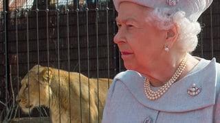 Royales Gipfeltreffen im Zoo: Die Queen eröffnet Löwengehege